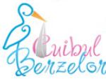 CUIBUL BERZELOR - cursuri de educatie prenatala pentru gravide - consiliere psihologica
