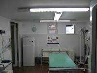 Interventii chirurgicale veterinare