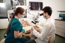 Platinum Dental Center - Servicii stomatologie